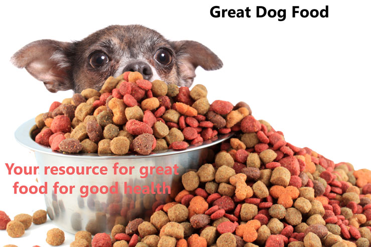 Great Dog Food